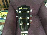 Lorenzo Fletcher and Coppock and Newman guitar. Model 191A. In excellent condition with bag.