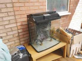 Aquastyle 620t 130L fish tank with fluval tetra accessories