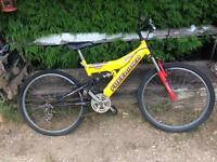Sentinel Freelander child's mountain bike