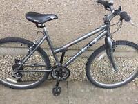 Ladies Edinburgh Bicycle bike