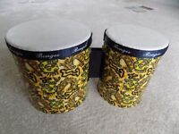 Childrens Bongo drums.