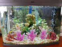64 litre fish tank/ cleaned ready to go