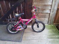 Raleigh Max Mini Girls Bike
