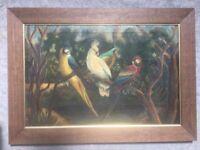"Spanish Oil Painting ""Amazonia Birds"""