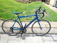 Carrera Road bike. 51cm. Comes with Quality set of lights and Cats eye bike comp.