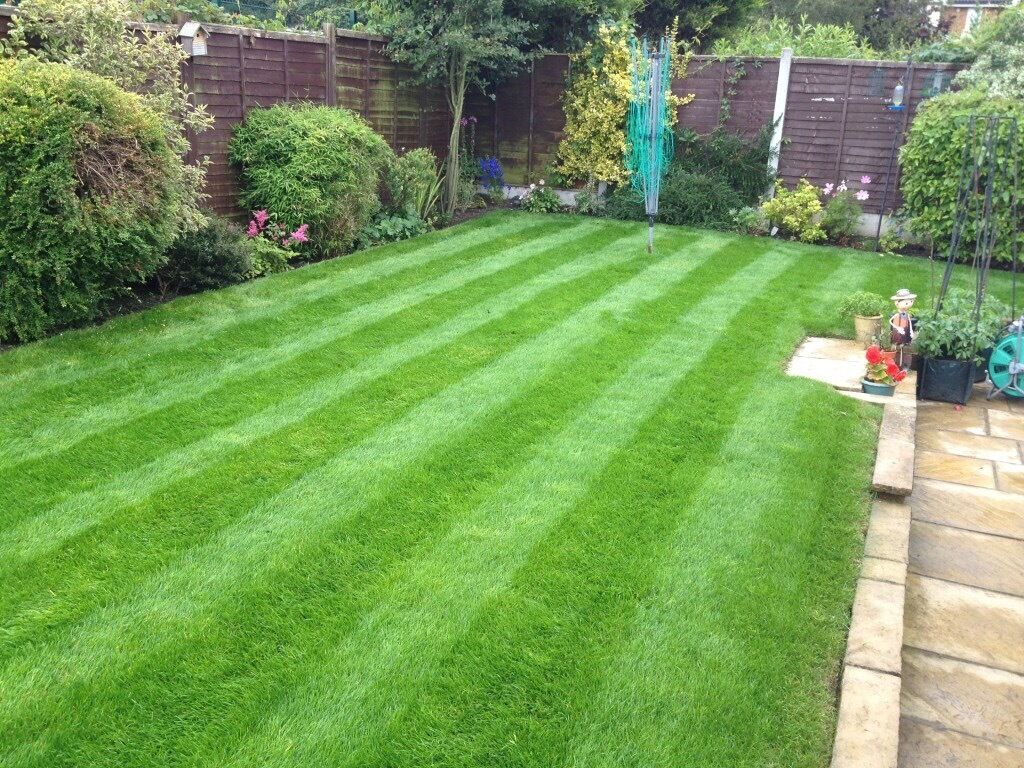 dh garden services and maintenance in northwich