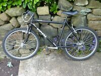 Bike, black frame unknown age. New tyres. 10 gears