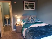 Lovely newly renovated ensuite rooms in Balby !