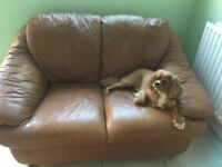 Terracotta 2 seater faux leather sofa dog not included!