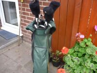 FURTHER REDUCED PRICE FULL SET GOLF CLUBS INCLUDING BAG IDEAL CHRISTMAS PRESENT