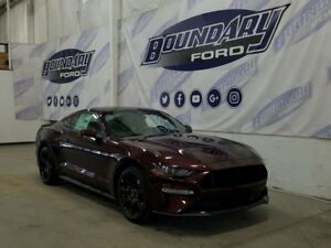 2018 Ford Mustang GT 400A 5.0L