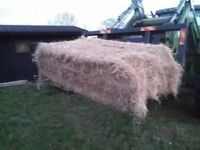 Hay Bales,Meadow Hay for sale ,Haylage Round Bales