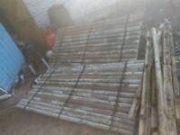 Bamboo screen x 3