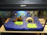 Aqueal Aquarium with Light, filter, Sand, Plant etc