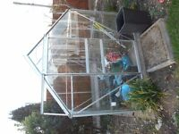 FOR SALE - 8FT X 6FT GREENHOUSE