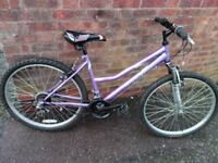 "ladies tamarind reflex phantone bike 26"" wheels"