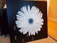Canvas Picture 85 x 85cm