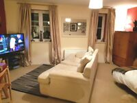 Big studio lounge double, sofa, TV, own bathroom, kitchenette, lovely location £455 pm