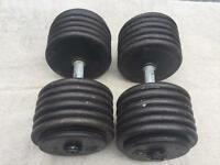 65kg strongman dumbbell set