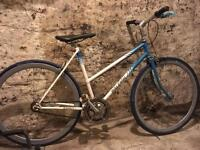 Vintage Raleigh bike single speed fixie fixed gear bicycle