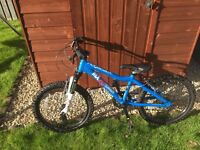 Boys Ridgeback MX 20 inch bike - blue, red and white - excellent condition