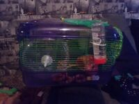 Hamster/ gerbil cage