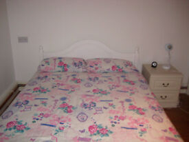 BRIGHT DOUBLE ROOM TO RENT IN LOVELY VICTORIAN HOUSE