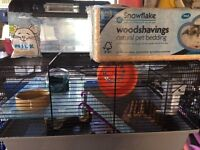 Hamster cage + carrier + saw dust