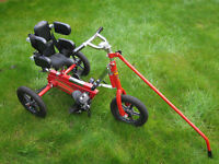 SPECIAL NEEDS SUPA WRK TRIKE-18months to 5years approx-Very good condition hardly used
