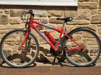 Mountain Bike (Virus Incisor)