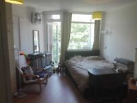 LARGE DOUBLE ENSUITE for rent in Hove