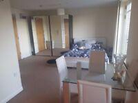 Contemporary studio apartment in S6