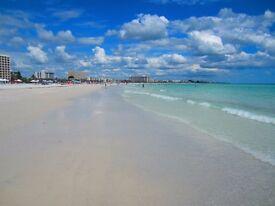 Siesta Key Florida, voted #1 beach in America!!