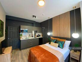 Studio flat in Mount Carmel Street, Derby, DE23 (#1101505)