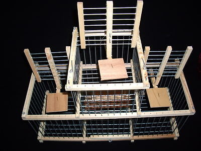 Bird Cage // Trap Cage with 3 Traps for Birds
