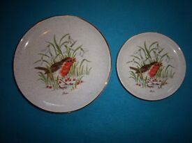2 x Robin Plates IP1