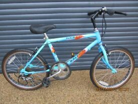 BOYS RALEIGH REBEL BIKE IN VERY GOOD USED CONDITION.. (SUIT APPROX. AGE 7+)..