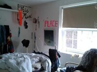 SUBLET double room in creative home (august /sept flexible) EU friendly