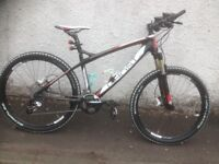 EBS Lector Ghost GCT. Unisex MTB. Fully serviced, fully safe and ready to go.