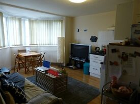 ONE BEDROOM FLAT TO LET IN GOLDES GREEN