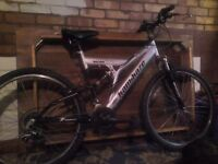 15 Gears Lady Mountain BIke