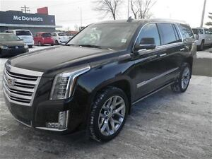 2015 Cadillac Escalade Platinum 4X4 Leather Sunroof NAV DVDS