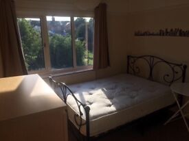 Double ROOM FOR COUPLE OR TWO WORKING PEOPLE is available now