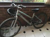 Dawes Ladies Mountain Bike