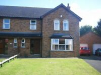 Spacious 5 Double bedroom Student house to let in quiet cul de sac ,close to bus stop.