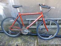 Saracen ruff ride Bike Frame