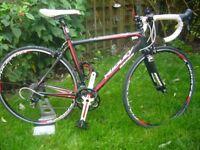 RIDLEY road bike.