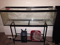 4ft Tank with Stand and Filter