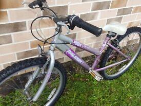 "Girls Raleigh Krush 24"" Wheel Mountain Bike"