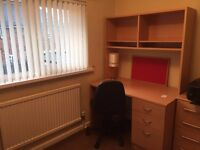 Quiet Single room to rent